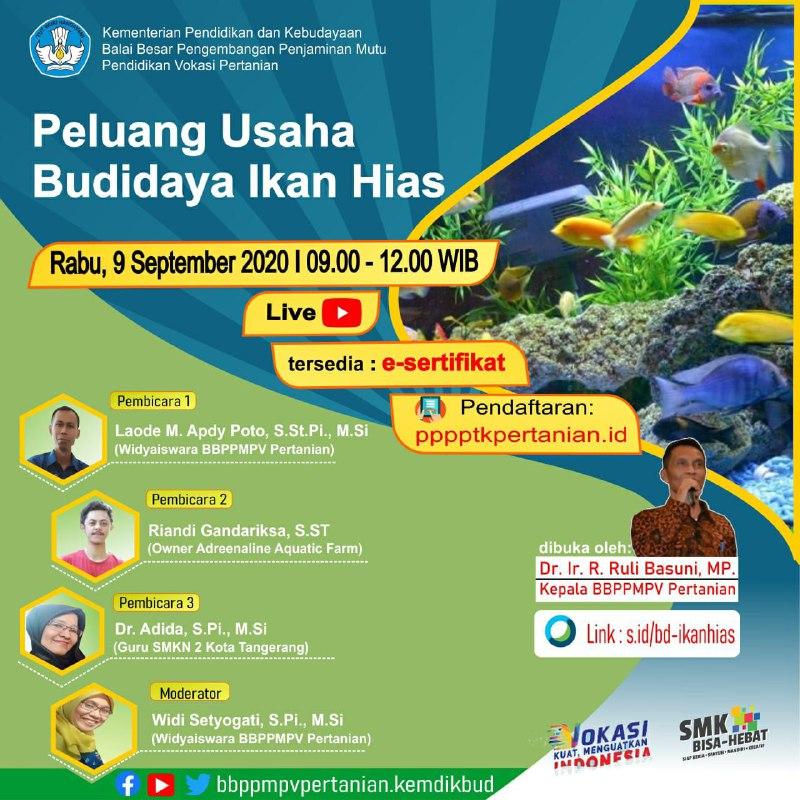 Webinar Peluang Usaha Budidaya Ikan Hias